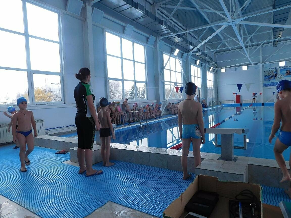 Юные пловцы Новошахтинска совершили свой первый старт, фото-1