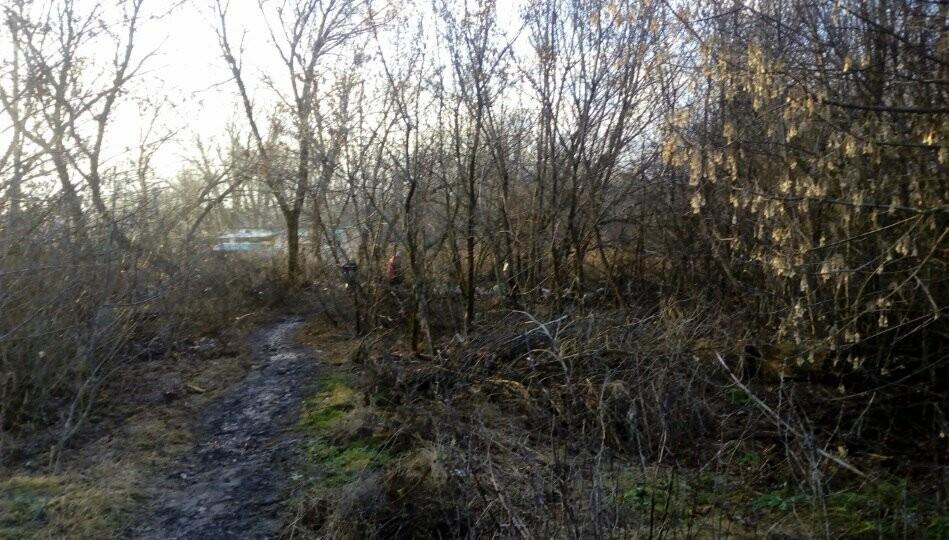 Ещё на одну свалку в Новошахтинске станет меньше, фото-2