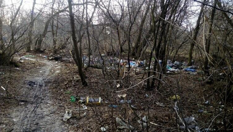Ещё на одну свалку в Новошахтинске станет меньше, фото-1