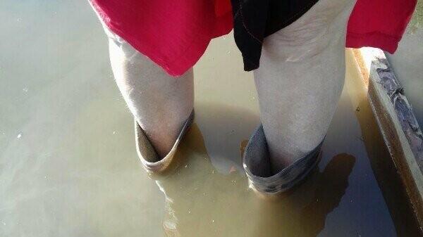 """Благодаря """"Донреко"""" двор жительницы Новошахтинска превратился в пруд, где живут лягушки, фото-1"""