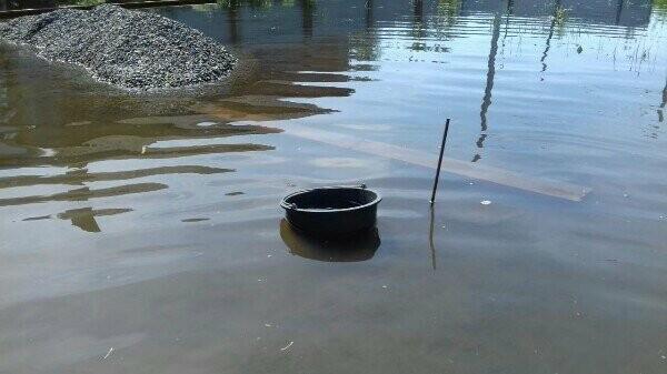 """Благодаря """"Донреко"""" двор жительницы Новошахтинска превратился в пруд, где живут лягушки, фото-5"""
