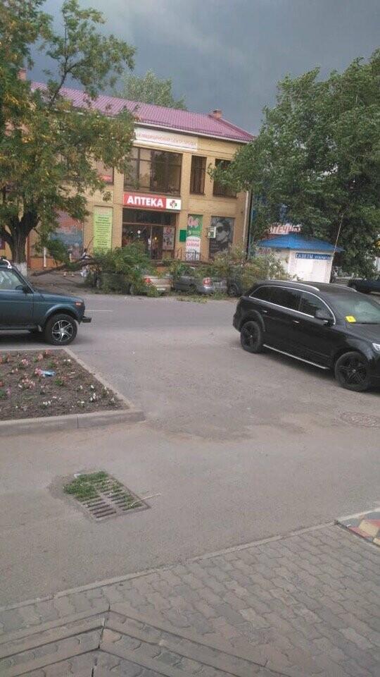 Упавшее дерево в центре Новошахтинска придавило сразу три автомобиля, фото-1