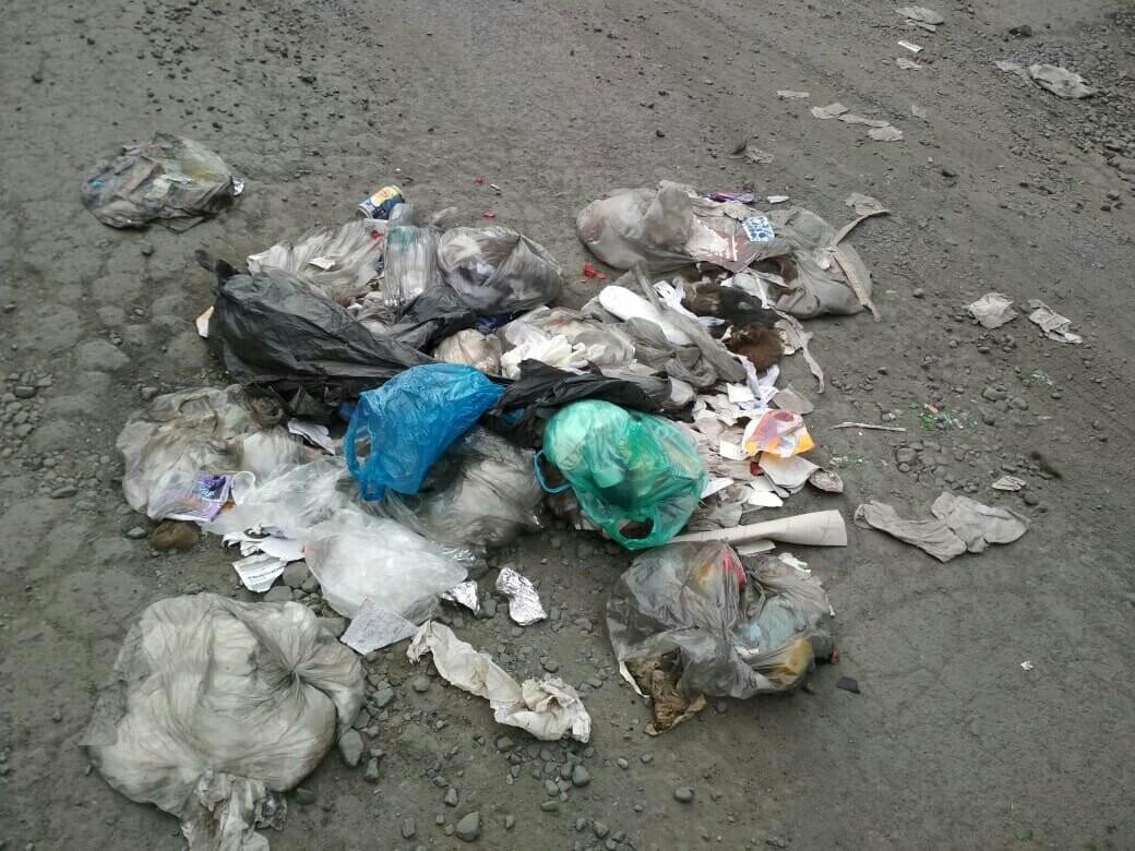 Чей мусор? Новошахтинцы жалуются на спецмашины, теряющие мусорные пакеты, фото-1