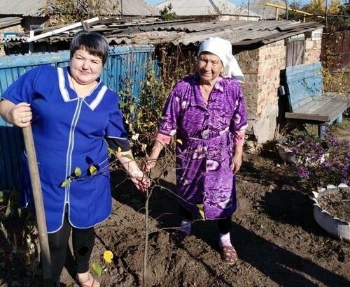 В Новошахтинске прошёл День древонасаждений, фото-1