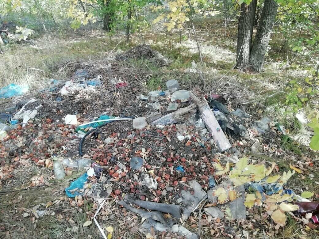 «Экологический десант» просит кировчан благоустроить родной посёлок , фото-1