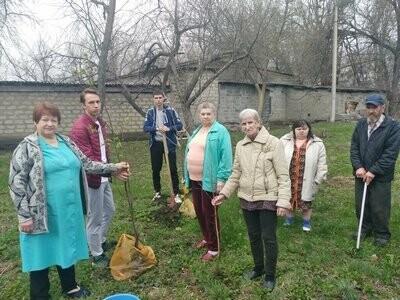 В Новошахтинске высадили деревья и кустарники, фото-1