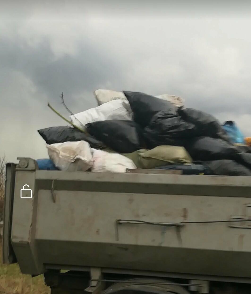 Новошахтинцы жалуются на то, что мусор из частного сектора вывозят не регулярно, фото-1