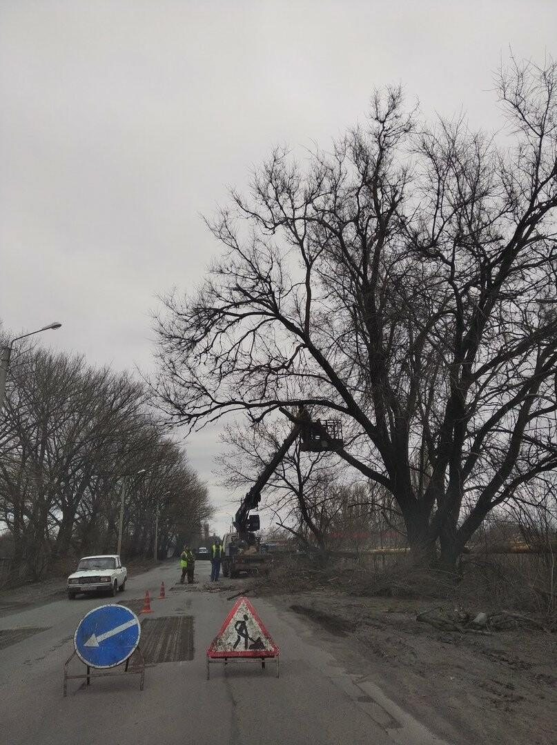 Новошахтинск продолжают приводить в порядок, фото-1
