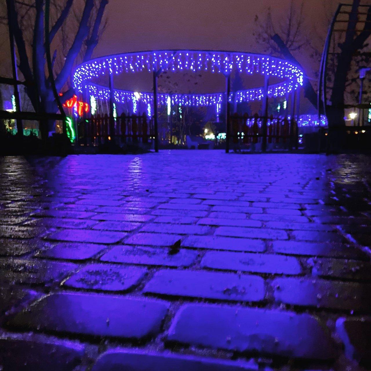 Новошахтинск преобразился к новогодним праздникам , фото-17