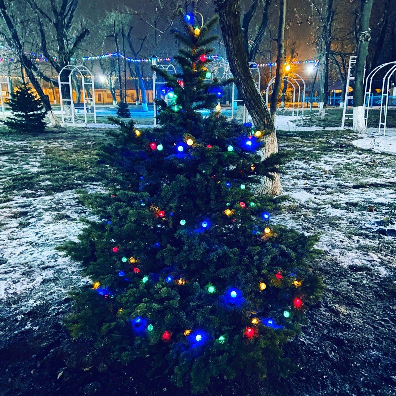 Новошахтинск преобразился к новогодним праздникам , фото-18